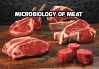 Microbiology of Meat