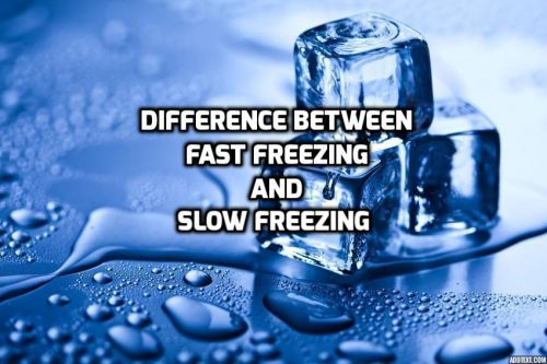Difference Between Fast Freezing And Slow Freezing