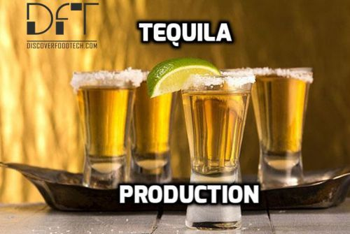 Tequila Production process