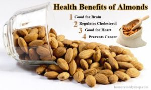 Hulled & Shelled Almond Processing - Discover Food Tech