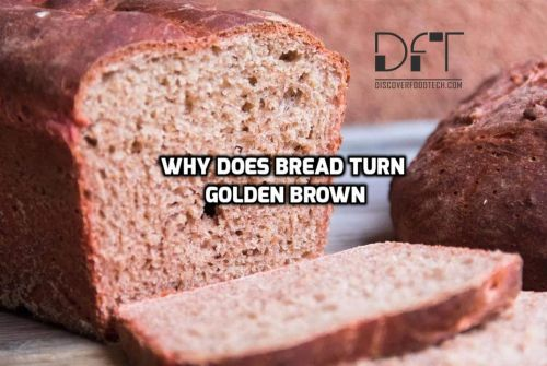 Why Bread Turns Golden Brown