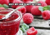 Why Jam Is Not Setting